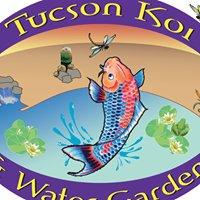 Tucson koi and water gardens