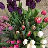 Brown's Garden and Floral Shoppe