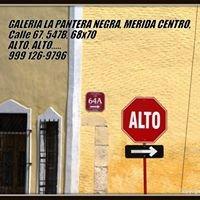 Gallery and B&B La Pantera Negra