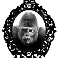 Galeria Gorila