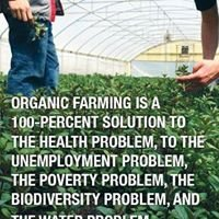 Organic Edible Gardening