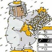 Davie County Beekeepers Association