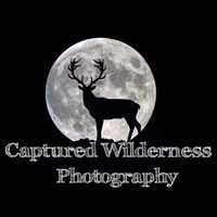Captured Wilderness Nature Photography