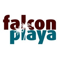 Falcon Playa
