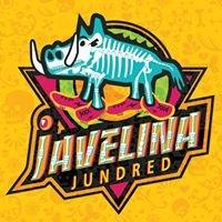 Javelina Jundred Endurance Run