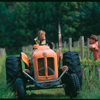 Oranje Tractor Wine
