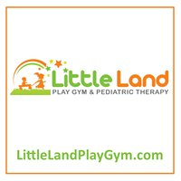 Little Land Play Gym & Pediatric Therapy