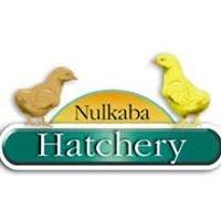 Nulkaba Hatchery