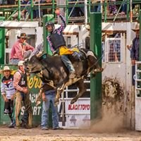 Warwick Rodeo and Campdraft