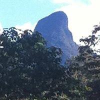 Mt Warning Rainforest Park