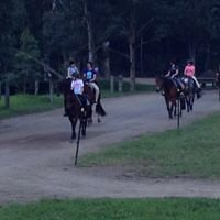 Glenworth Valley horse riding