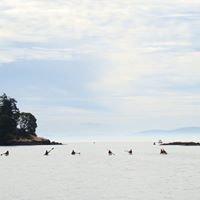 United World Kayakers