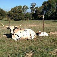 Triple F Ranch