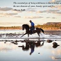 Hidden Trails By Horseback
