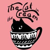 Cat in the Cream