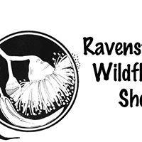 Ravensthorpe Wildflower Show