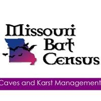 Missouri Bat Census