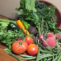 Foods of Colorado / Vail Farms