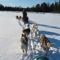 Sugardogs Adventure Company