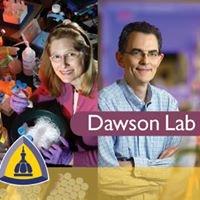 Johns Hopkins Dawson Lab