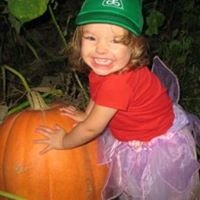 McCurdy's Pumpkins