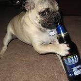 Bottoms Up Pub