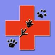 Gulfcoast Veterinary Emergency Hospital