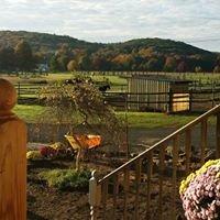 Dream Meadow Farm llc.