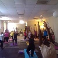 Yoga Hive Healing Arts Studio