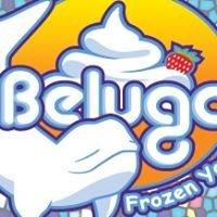 Beluga Froyo