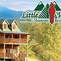 Little Valley Mountain Resort Cabin Rentals