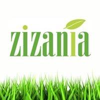 Zizania Nutrition Education & Coaching