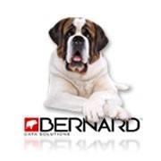 Bernard Data Solutions