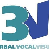 3V Communications Ltd.