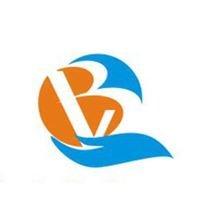 Biz Virtuoso Consulting Group