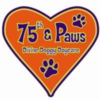 75th & Paws Doggy Daycare