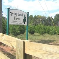 Spring Brook Farm - Christmas Trees
