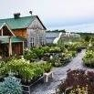 Marlin Orchards & Garden Centre