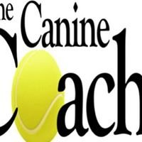 The Canine Coach!