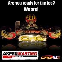 Aspen Ice Karting