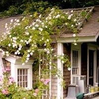 Sue Chessia Floral Design