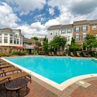 The Townes at Herndon Center Townhomes-Greystar