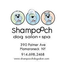 Shampooch Dog Salon