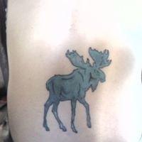 Blue Moose!