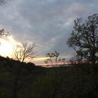 Bluebonnet Trail At Cedar Ridge Preserve