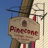 Pinecone of Westport