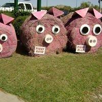 Kingstree Pig Pickin' Festival