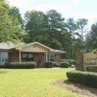 Carroll County Animal Hospital