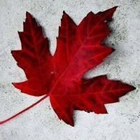 Nurse Practitioner Association of Canada