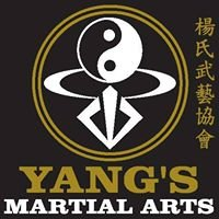 Yangs Martial Arts (Andover)